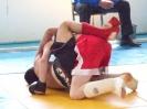 Відкритий аматорський турнір з мікс-файту_34
